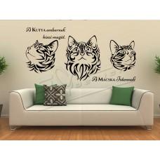 Kedves cicák